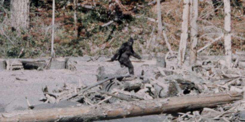 Bigfoot-1170x750